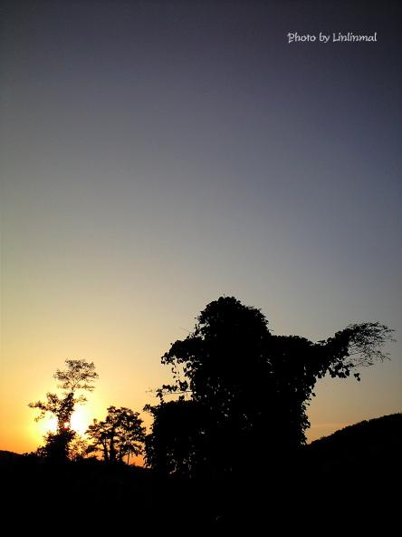 夕日に立ち向かうシルエット-1.jpg