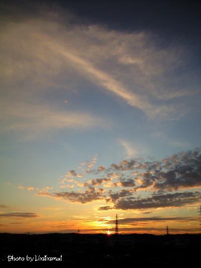 初秋の夜明け2.jpg